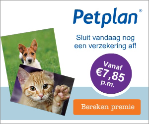 Petplan dierenverzekering
